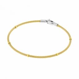 Bracelet jonc en or jaune, acier et acier doré